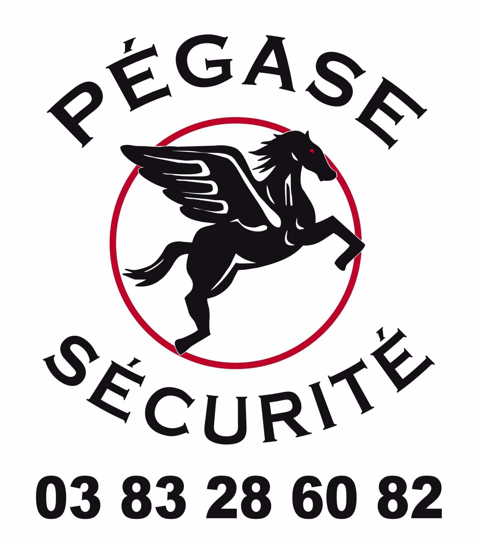 PEGASE SECURITE